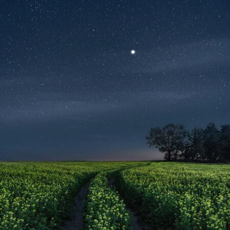 Nachtfotografie kreativ umgesetzt von Tigran Heinke